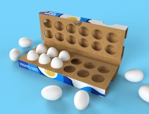Ook eierdozen maak je van golfkarton